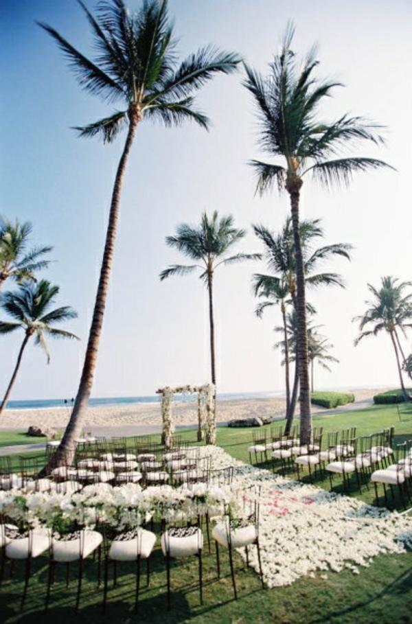 heiraten-am-strand-super-große-palmen