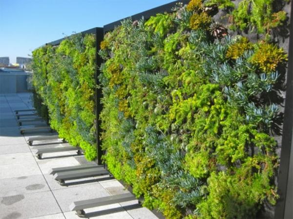 mobile-trennwände-gestaltung-aus-grünen-pflanzen - super aussehen