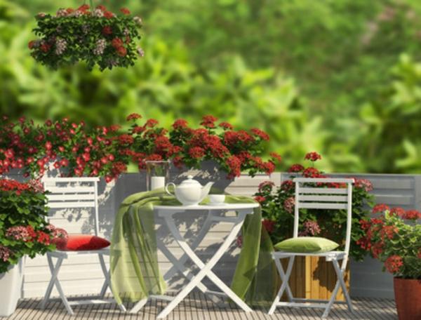 rote schöne blumen und weiße stühle im garten