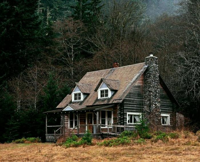Berghütte-Blockhaus-Holz-Stein-Wald-Nadelbäume