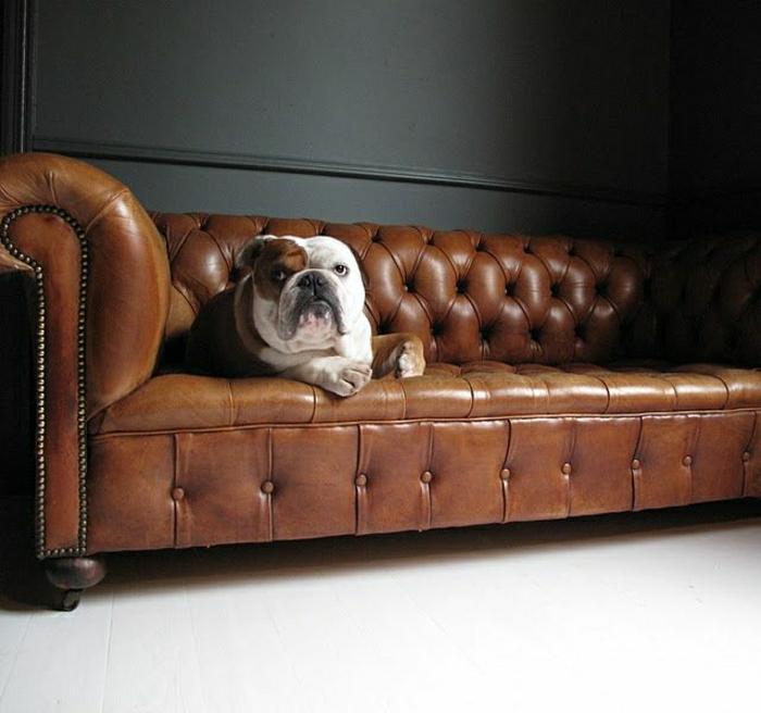 Chesterfield-Sofa-Bulldog