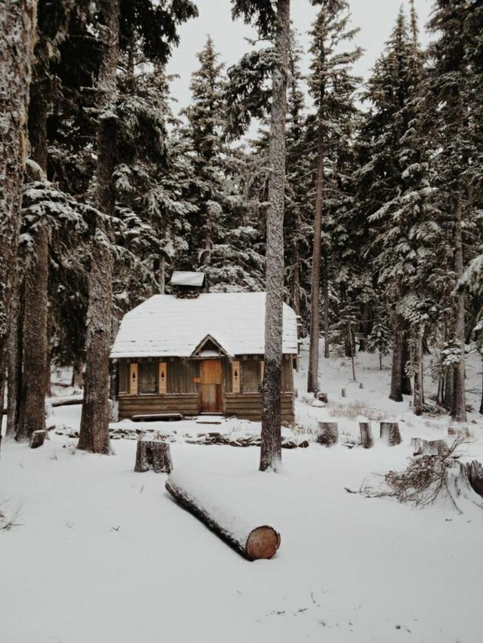 Gebirge-Wald-Hütte-Winter-Schnee-Nadelbäume
