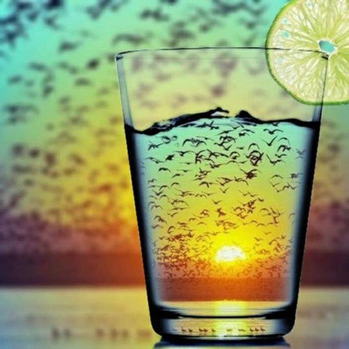 coole-Bilder-Getränk-Zitrone-Vogelschwarm-Sonnenuntergang
