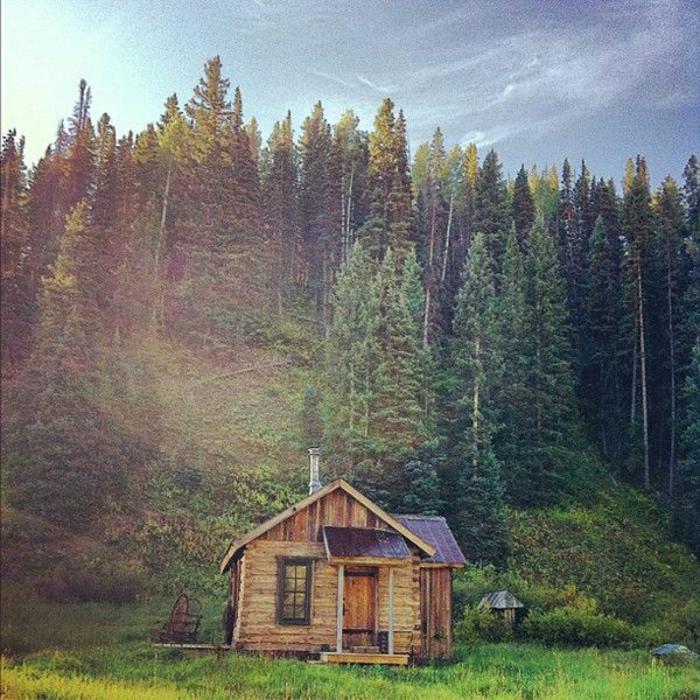 Hütte-Blockhaus-Holz-Gebirge-Gras-Nadelbäume