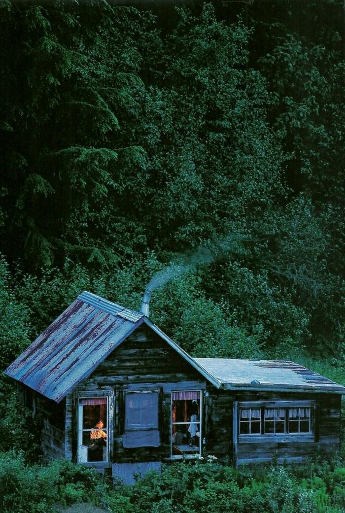Hütte-Holz-Alaska-Wald