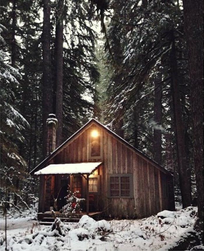 Hütte-Holz-Gebirge-Wald-Schnee-Bäume