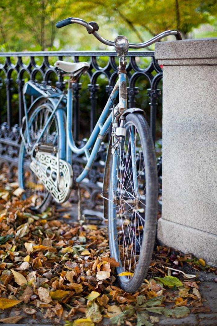 altes-blaues-Fahrrad-Klingel-Herbstblätter-Brücke
