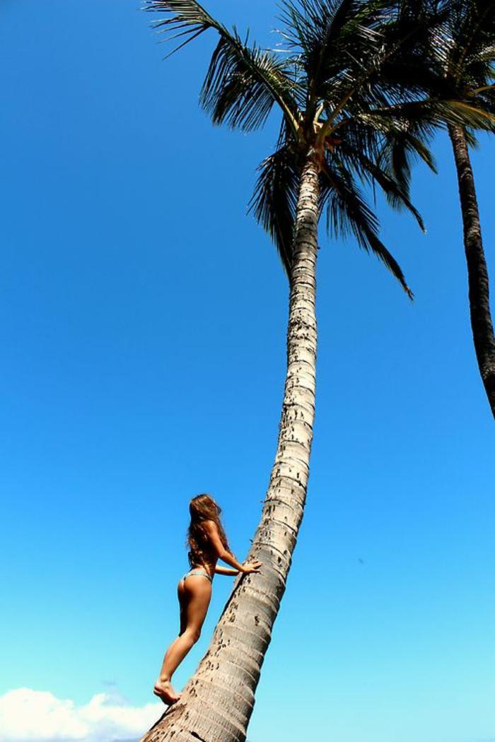 42 richtig einzigartige Bilder von Palmen! - Archzine.net