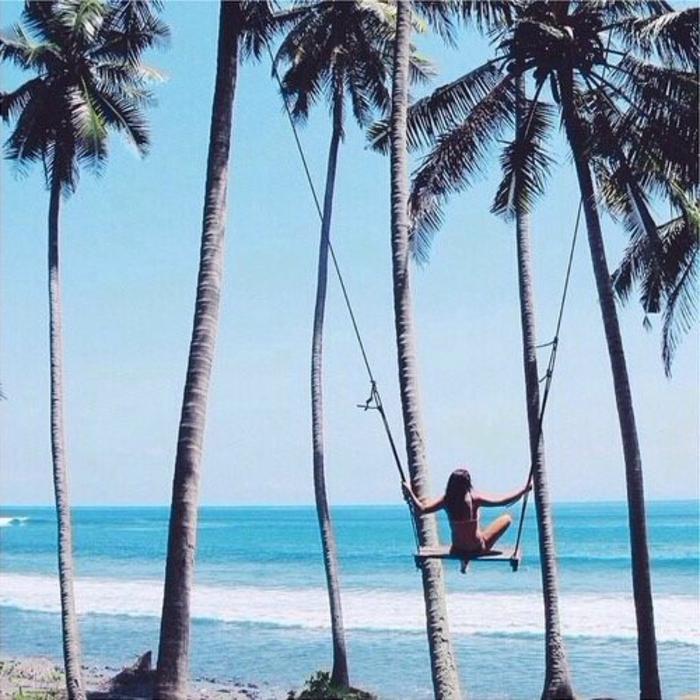 bilder-von-palmen-einmaliges-aussehen