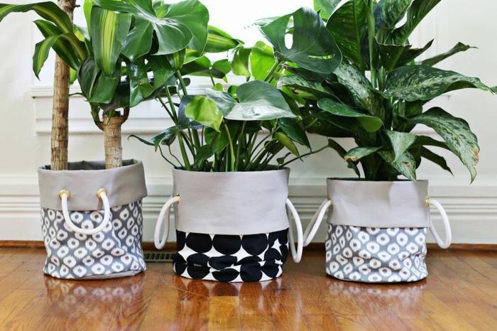 garten-verschönern-grüne-schöne-pflanzen