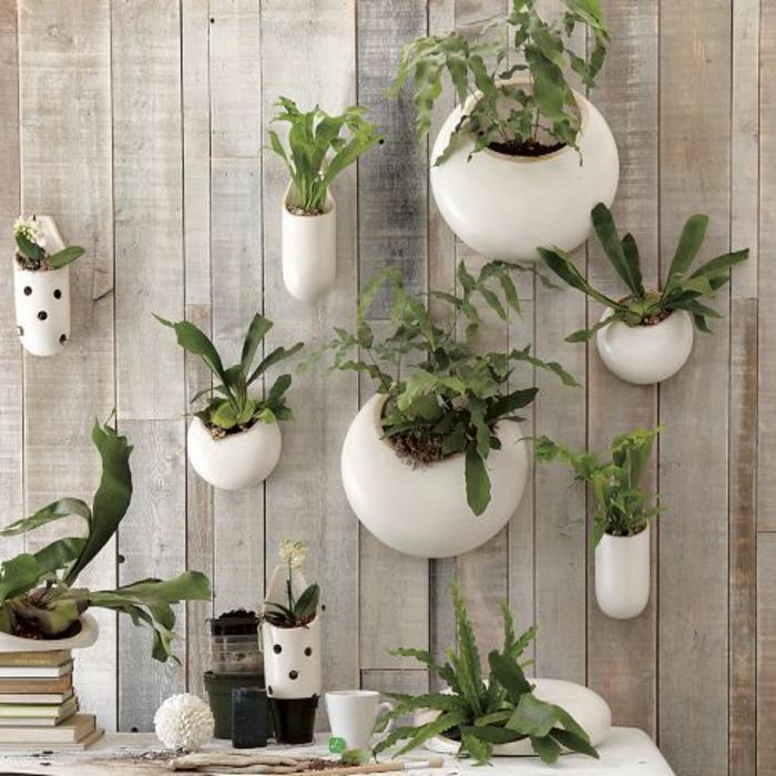 garten-verschönern-hängende-pflanzen