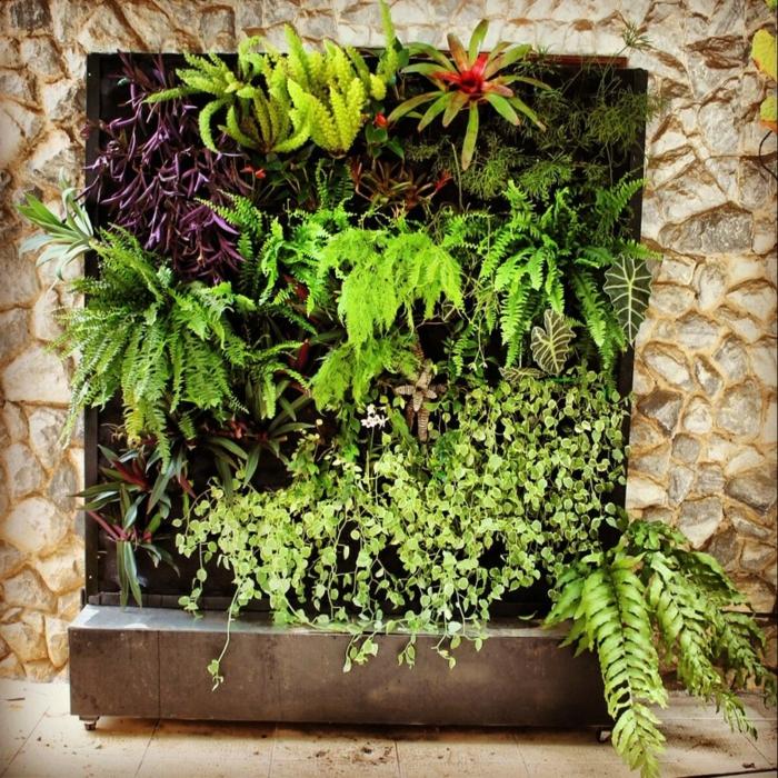 garten-verschönern-interessante-grüne-pflanzen