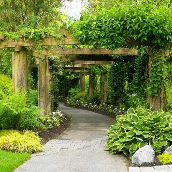 garten-verschönern-viele-schöne-grüne-pflanzen