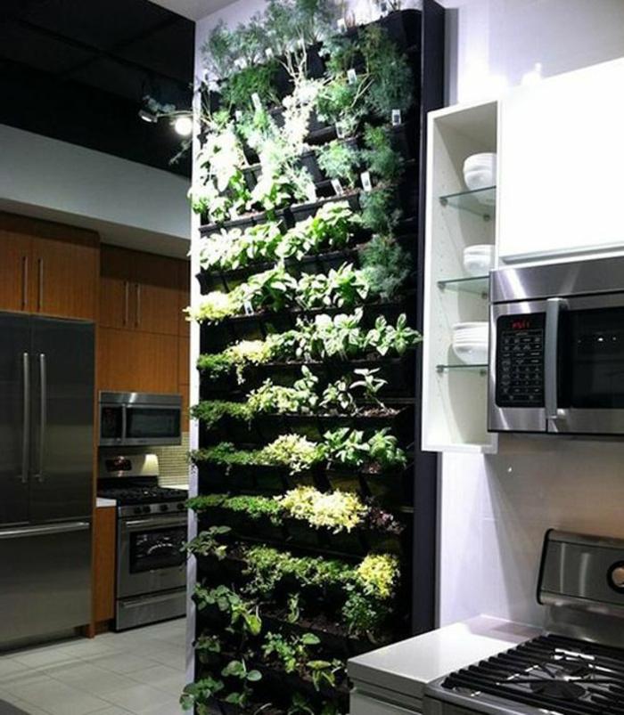 grüne-wandfarbe-viele-pflanzen-an-der-wand-in-der-küche