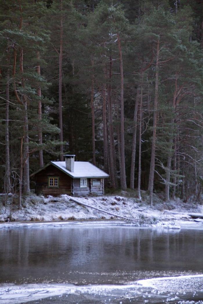 kleine-Berghütte-Wald-Nadelbäume-See-Schnee