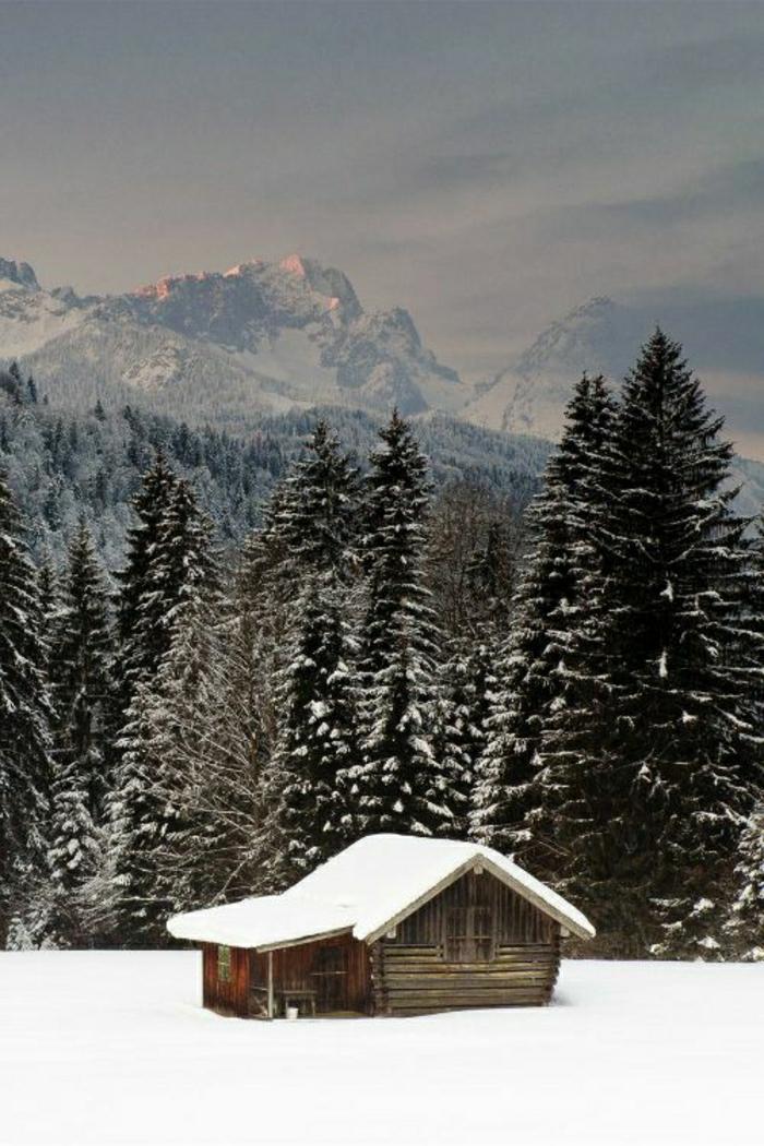 kleine-Hütte-Gebirge-Nadelbäume-Winter-Schnee