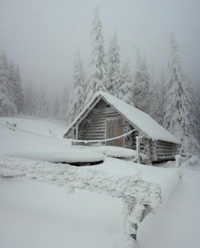 kleine-Hütte-Schnee-bedeckt-Gebirge-Bäume
