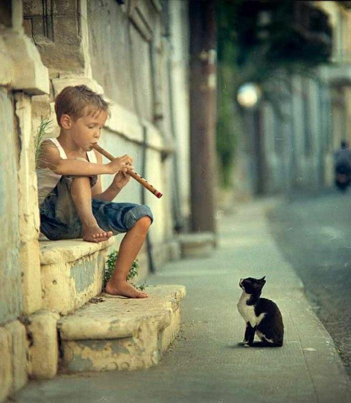 kleiner-Junge-Flüte-spielen-Katze-Straße