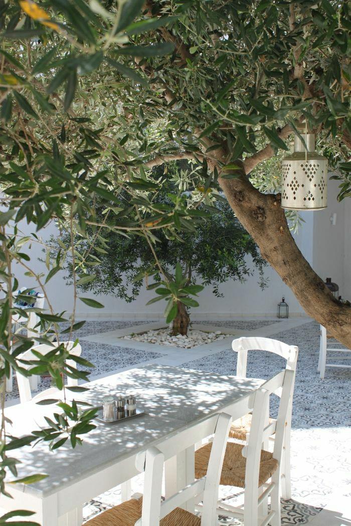 mediterraner-Garten-weiße-Stühle-Tisch-Olivenbaum