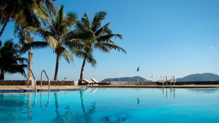 pool-bilder-exotische-palmen