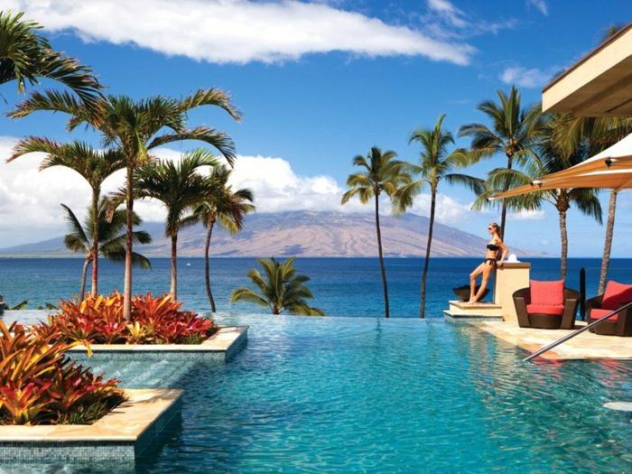 pool-bilder-exotische-schöne-umgebung-palmen