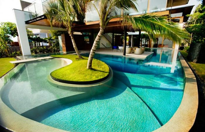 pool-bilder-schöne-grüne-palmen
