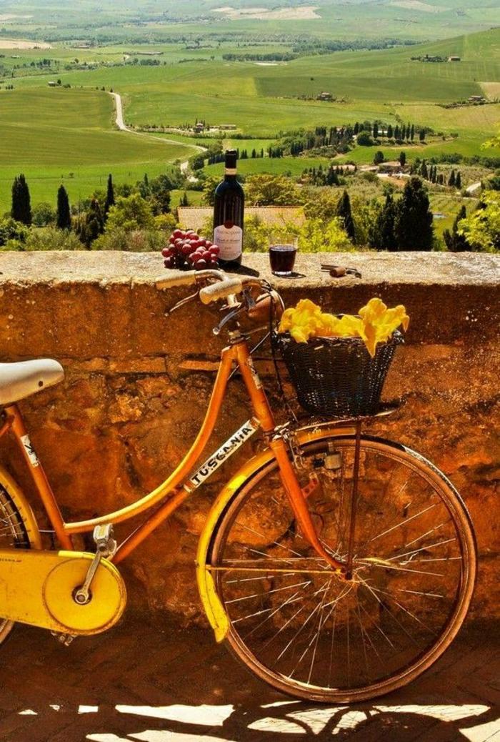retro-Fahrrad-Tal-Wiesen-Grün-Rotwein-Flasche-Glas-Trauben-Steinmauer