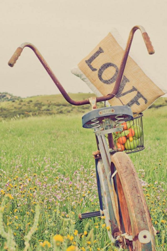 retro-altes-Fahrrad-Korb-Früchte-Kisse-Wiese-Blumen