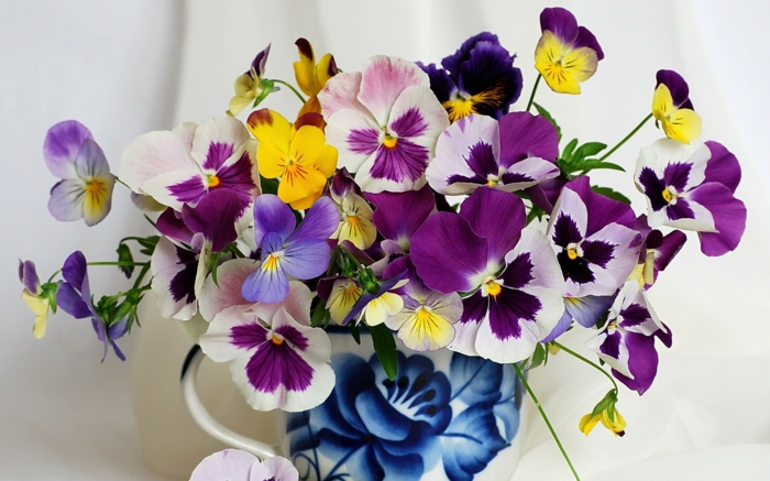 veilchen-blumenstrauß-mit-wunderschönen-blumen-dekoration-deko-mit-blumen