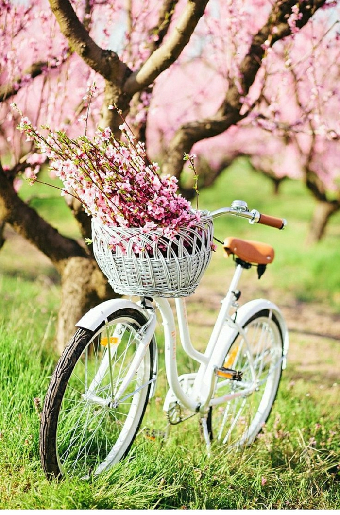 weißes-vintage-Fahrrad-Gras-Baum-Frühlingsblüten