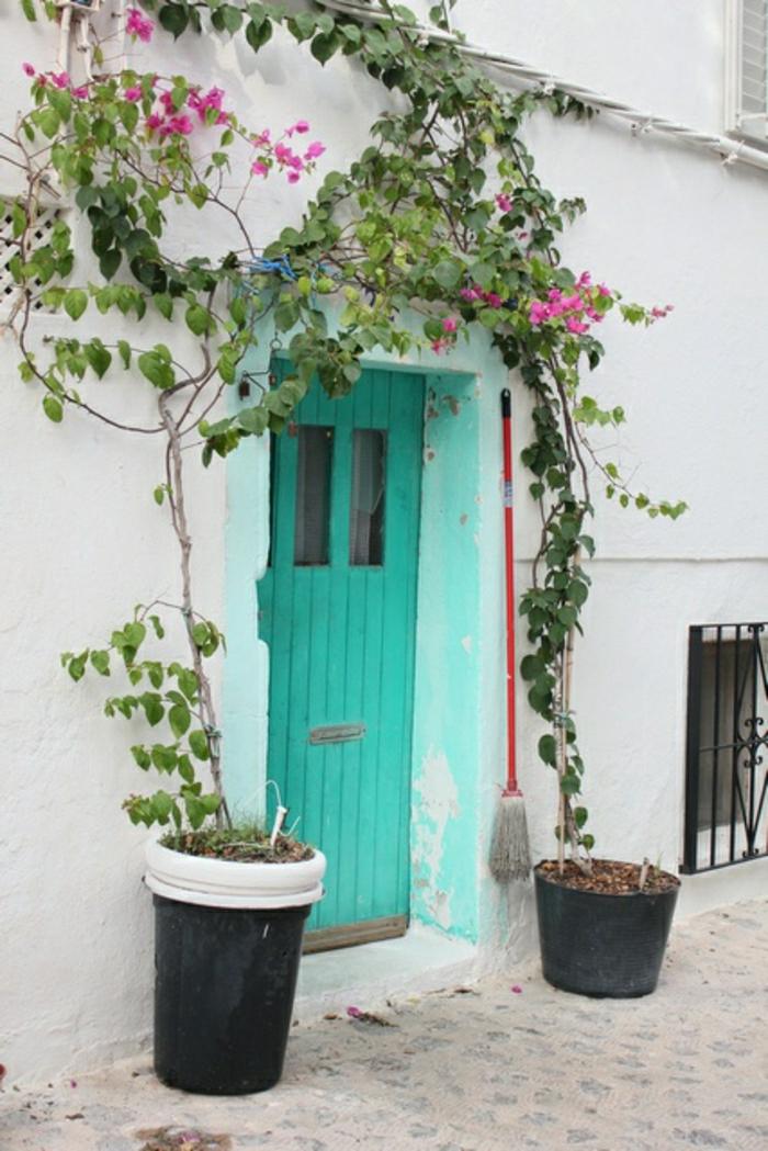 Ibiza-Spanien-türkis-Farbe-Haustür-alt-retro-vintage-rosa-Blumen