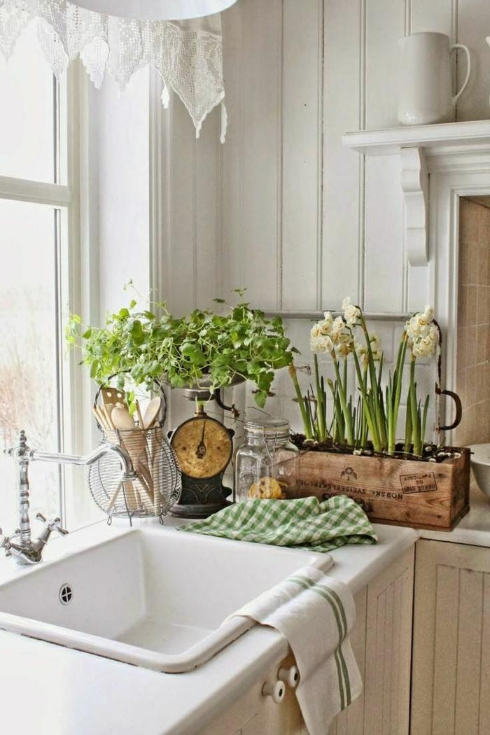 Küche-rustikales-Design-Pflanzen