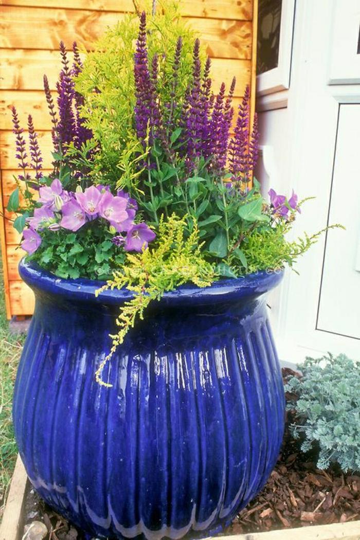 Keramik-im-Hof-blauer-Blumentopf-lila-Blumen