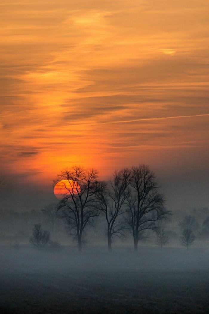 Sonnenuntergang-Bilder-Winterbild-Bäume