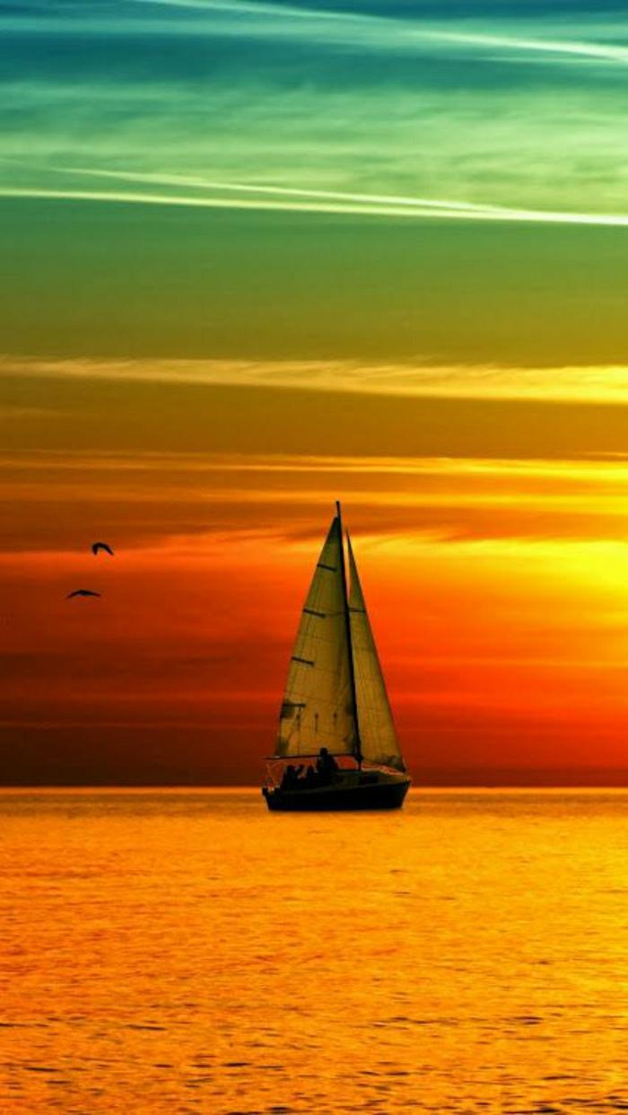 Sonnenuntergang-Foto-Wasser-Segelboot-Vögel