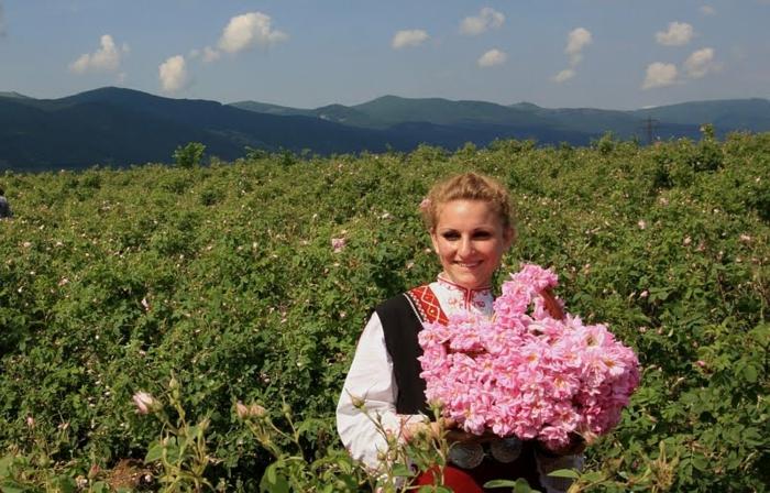 bulgarische-rose-eine-junge-frau-auf-dem-wiesen