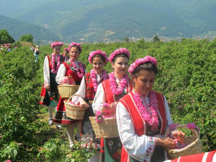 bulgarische-rose-eine-reihe-von-bulgarischen-frauen