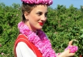 Die bulgarische Rose: eine große Sensation!