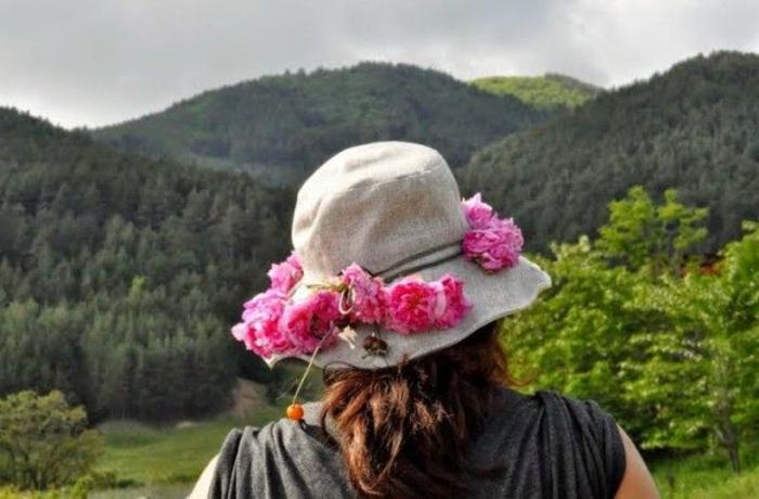 bulgarische-rose-hut-gebirge