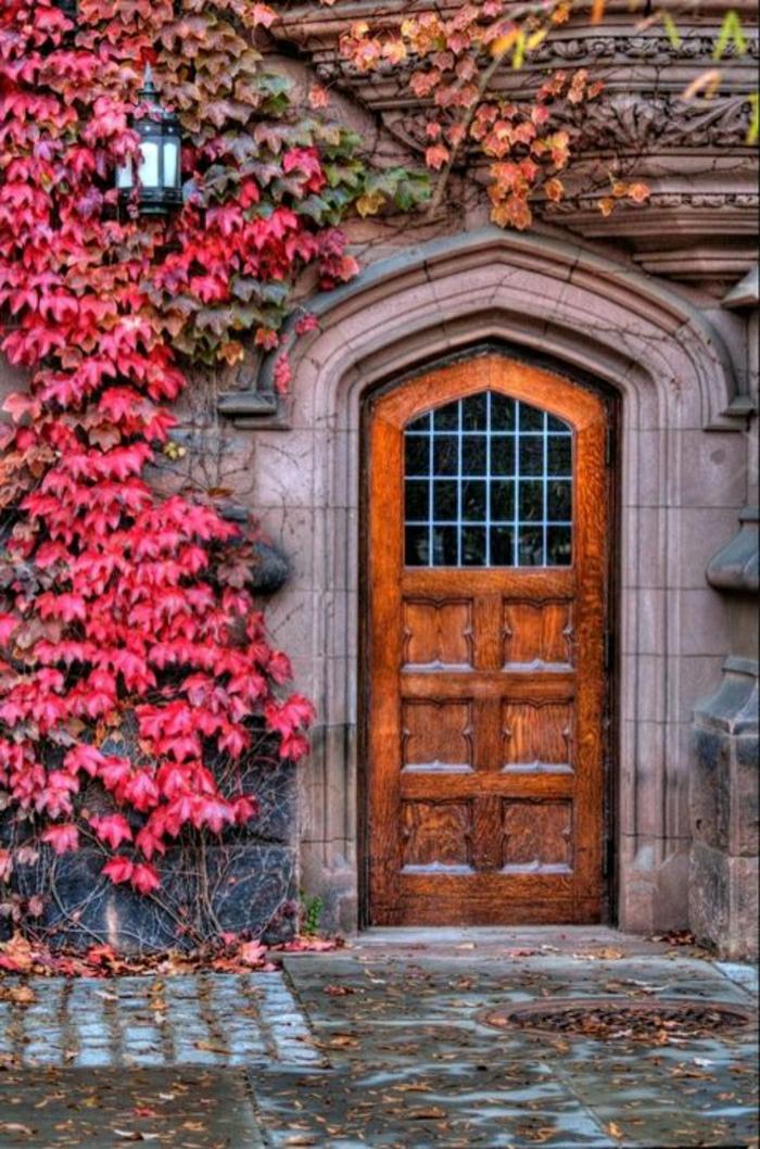 hölzerne-Haustür-rosa-Blätter-altes-Gebäude-aristokratisch