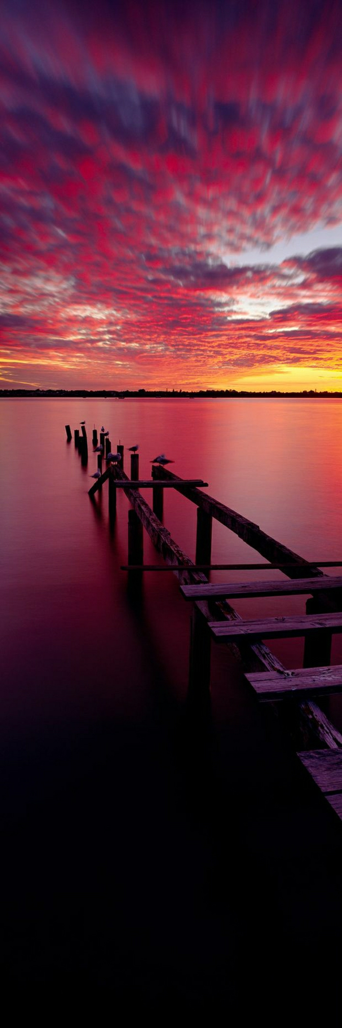 schöner-Sonnenuntergang-Brücke-Vögel-See