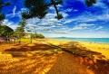 Sonne und Strand: 65 tolle Fotos!
