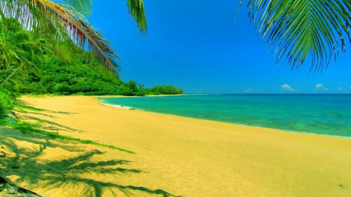 sonne-und-strand-goldener-Sand