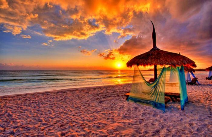 Sonne Strand Palmen