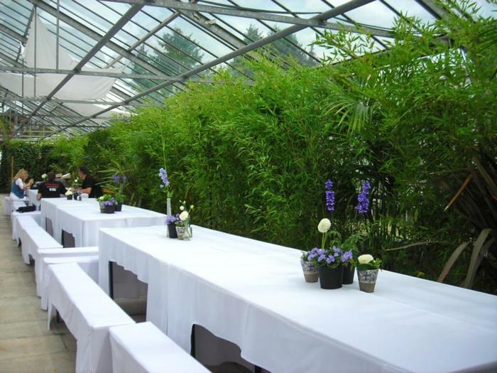 tischdeko-für-sommerpartry-grüne-pflanzen