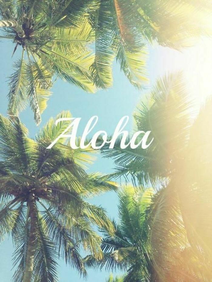 Aloha-Hawaii-Inseln-exotischer-Urlaub-Surfen-Palmen-Erholung