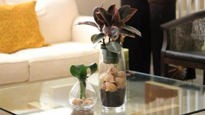 Deko-mit-Musheln-zwei-Vasen-auf-dem-Tisch