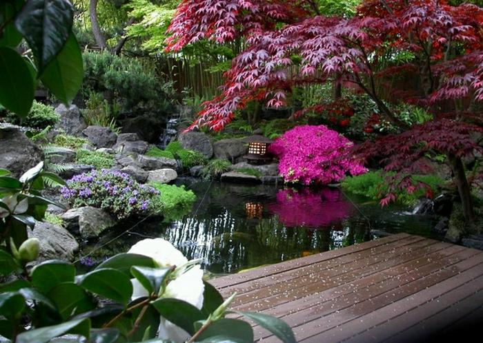 Exterieur-Idee-Zen-Garten-japanischer-Stil-See-Blumen-Steine