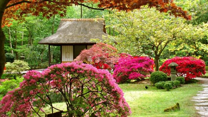 Garten-Frühling-schöne-Blüten-japanisches-Haus