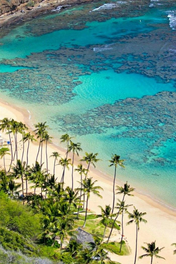 Hanauma-Bay -Oahu-Insel-Hawaii
